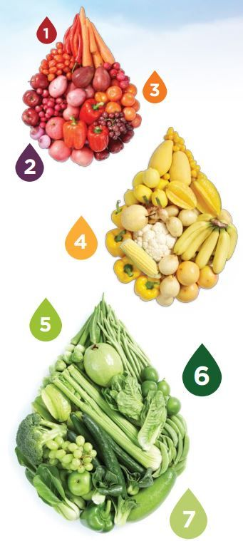 What is a good way to find out about different vegetables and their benefits?