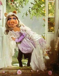 Miss Piggy Sweating for the wedding. #motivatehopestrength.com #personal Training Philadelphia