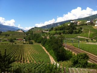 #Wine tasting at the winery of Nadia and Diego Mathier, #Salgesch, #Valais, #Switzerland