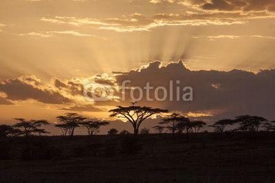 """Stampa su tela """"Tramonto africano"""". #regala un #quadro #stampa su #tela per #cameradaletto"""