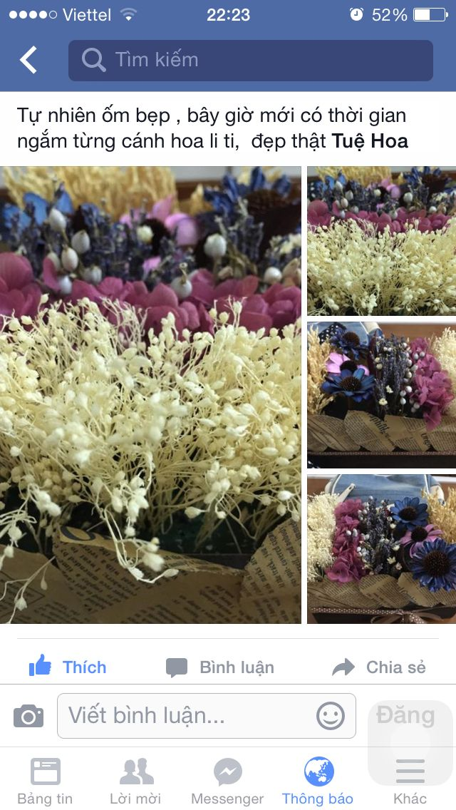 Luống hoa Facebook.com/nhatkyhoakho