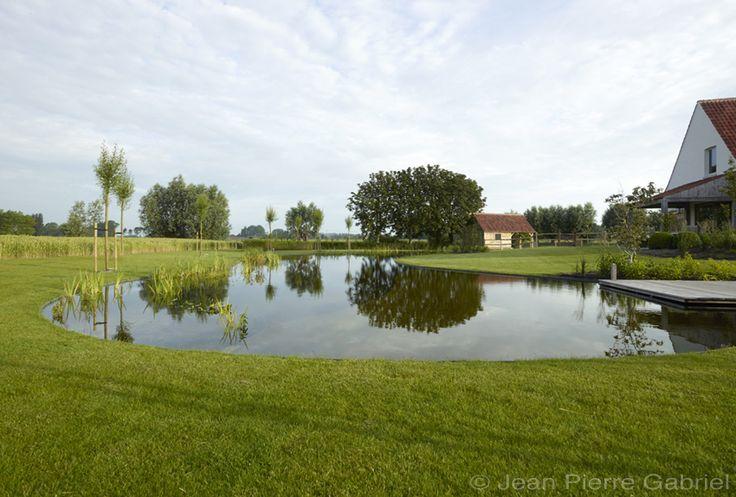 Prachtige zwemvijver in de polders, zwemvijver aanleggen kostprijs