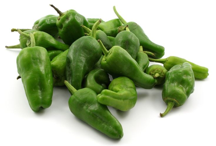 These famous little green peppers are served as a tapa in bars all over Spain…