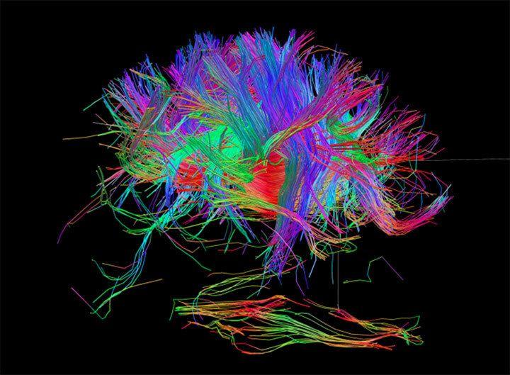 Джо Диспенза: наше сознание влияет на реальность!