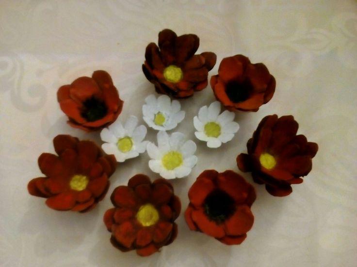 Λουλούδια φτιαγμένα  από θήκη  αυγών
