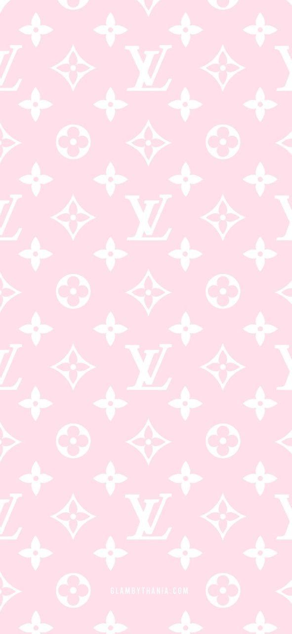 45 Beautiful Roses Wallpaper Backgrounds For Iphone Best Flower Wallpaper Pink Flowers Wallpaper White Roses Wallpaper