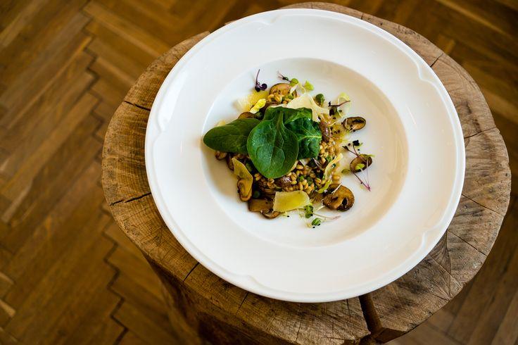 Barley risotto with mushrooms and Horezu cheese. Photo credits, Cristian Ștefan Crâșmariu.
