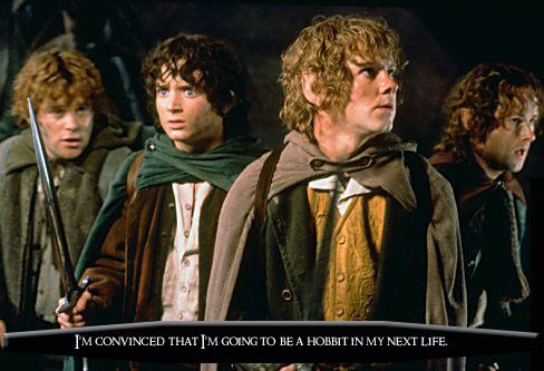 the fellowship of the ring temptation Literary analysis, jrr tolkien - temptation in the fellowship of the ring.