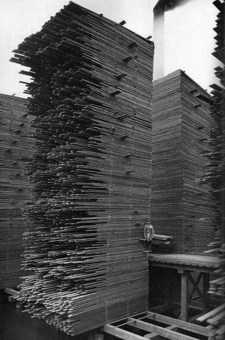 cedar Mill, Seattle, 1919.