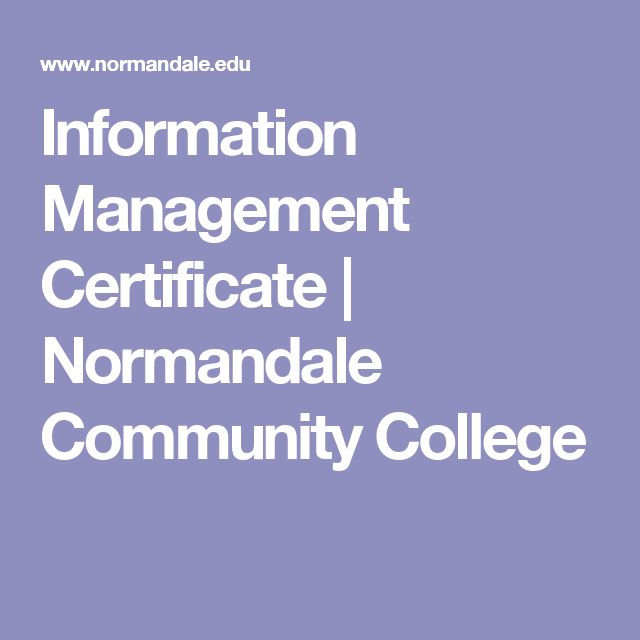 Information Management Certificate | Normandale Community College