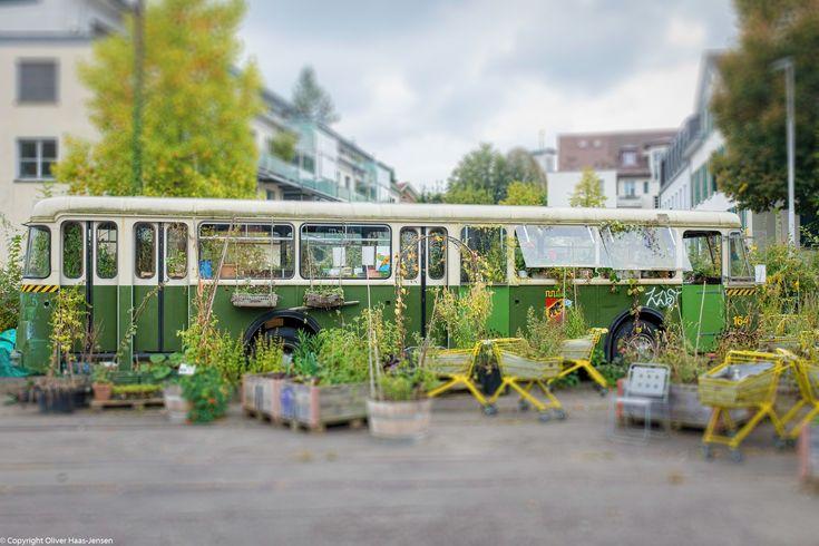 Urban Gardening on Wheels