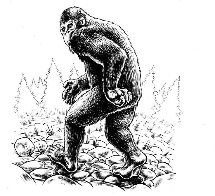 17 Best images about Bigfoot Comics & Infographics on ...Bigfoot Comic