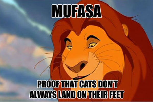 the-lion-king-mufasa-death-meme