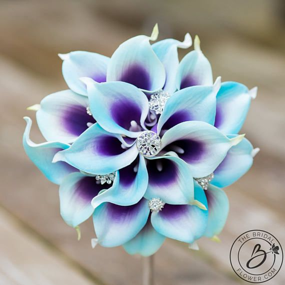 """""""Purple and Blue Dream Come True"""" small bridal, bridesmaid, or Maid of Honor calla lily wedding bouquet with 18-20 real touch calla lilies  Beautiful picasso/dual shade purple and blue calla lilies, and a little bling is a perfect bouquet for your chic wedding! Also can work for your bridesmaids or Maid of Honor to carry down the aisle with you and also a gift to keep after the wedding! Made with real touch calla lilies. Handle is wrapped in white satin ribbon.  Listed: one bridesmaid bo..."""