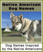 Native American Dog Names button- navigation button to our dog name list, featuring an image of a wolf mix in front of some teepees