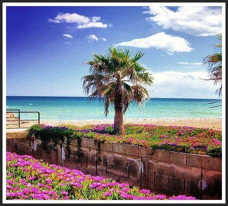 Spanien Beach moncofa es playa  (Castellón) - http://xblogs.me/spanien-beach-moncofa-es-playa-castellon/  #Spain
