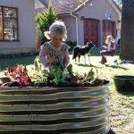 Kids Vegetable Garden
