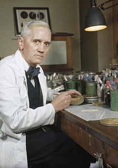 Sir Alexander Fleming, FRSE, FRS,[1] FRCS(Eng) (6 August 1881 – 11 March 1955) was a Scottish biologist, pharmacologist and botanist. He wrote many articles on bacteriology, immunology, and chemotherapy. His best-known discoveries are the enzyme lysozyme in 1923 and the antibiotic substance penicillin from the mould Penicillium notatum in 1928, for which he shared the Nobel Prize in Physiology or Medicine in 1945 with Howard Florey and Ernst Boris Chain.