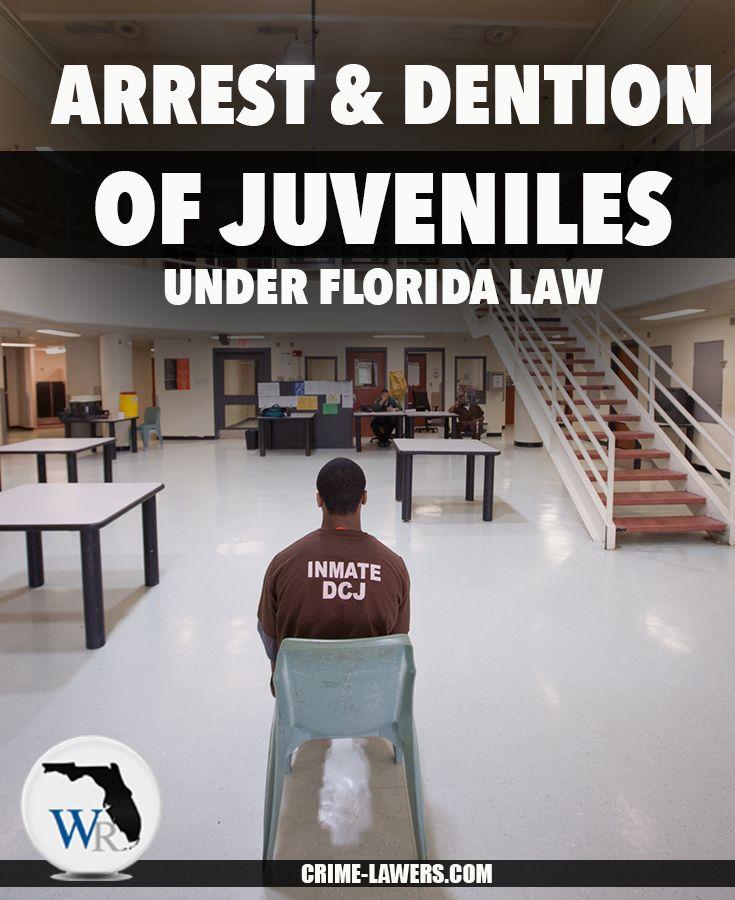 best juvenile justice images career crime  processes in juvenile justice processing essay