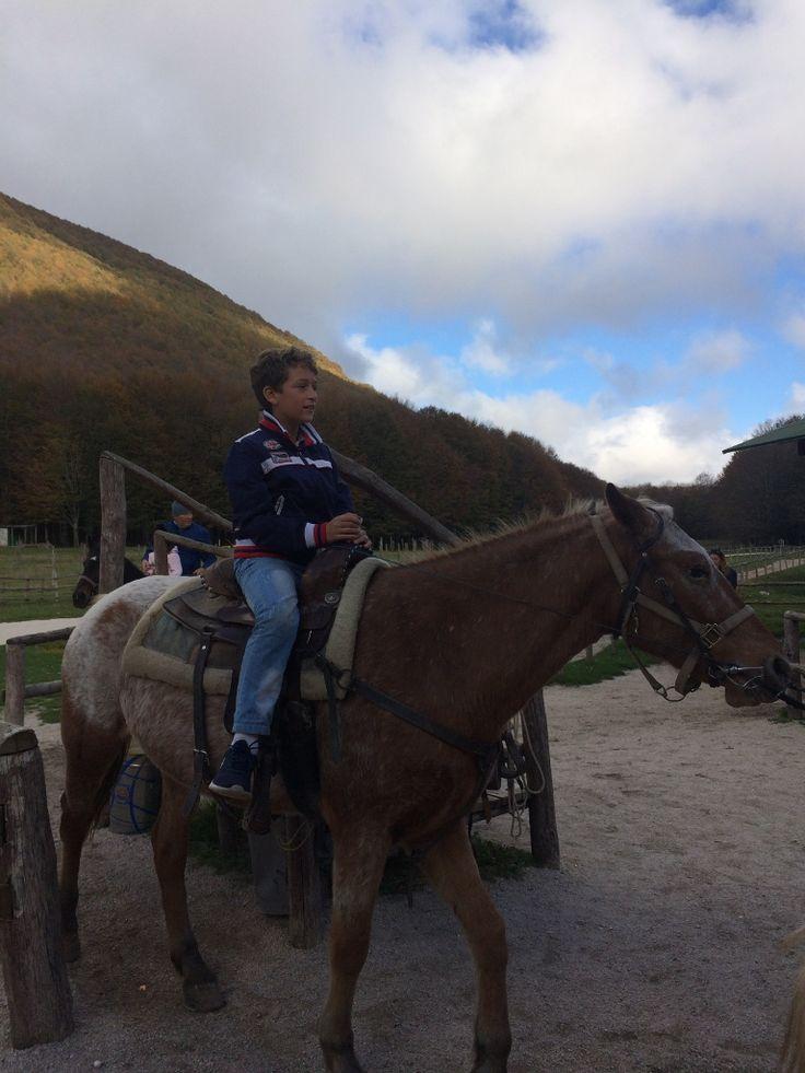 First a cavallo sul monte Terminio http://www.blogfamily.it/27289_gita-domenicale-sul-monte-terminio-avellino/