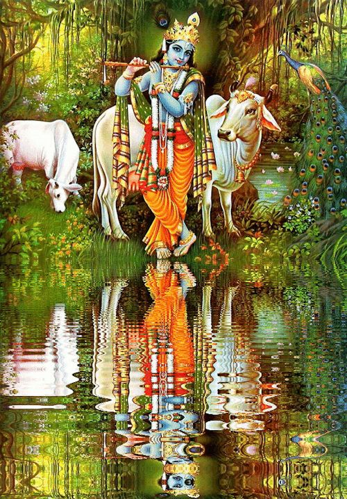 Hare Krishna ॐ