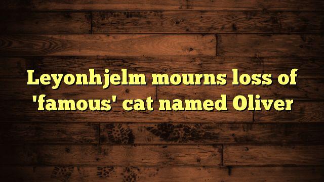 Leyonhjelm mourns loss of 'famous' cat named Oliver - https://twitter.com/pdoors/status/788546608564613120