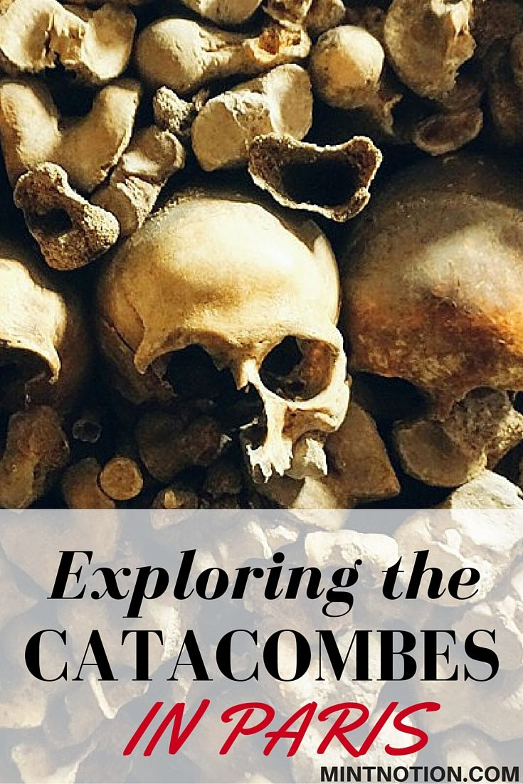 Visiting the Catacombs in Paris. This was one of the most unique things I've done during my travels, I recommend a visit!