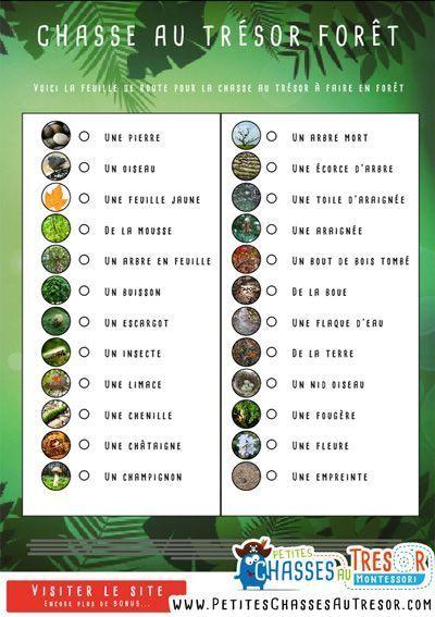 Hervorragend Plus de 25 idées uniques dans la catégorie Chasses au trésor  MT22
