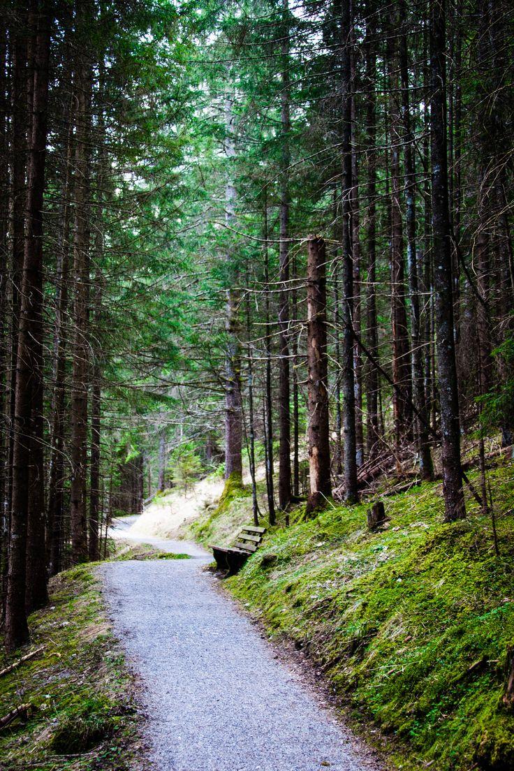 Blog: www.photopraline.com Lermoos, Tirol