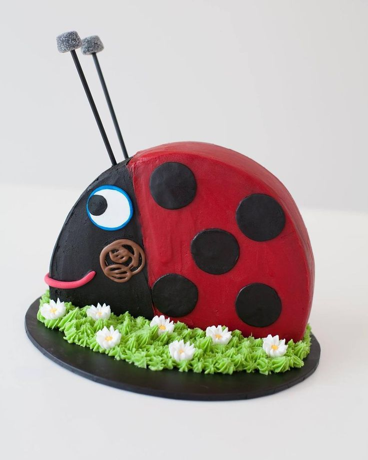 Was a bit sad cutting this lovely fellow up today. Happy Birthday to my little Mr 3 #Gaston #ladybird #benandholly #thirdbirthday #cake #homemade