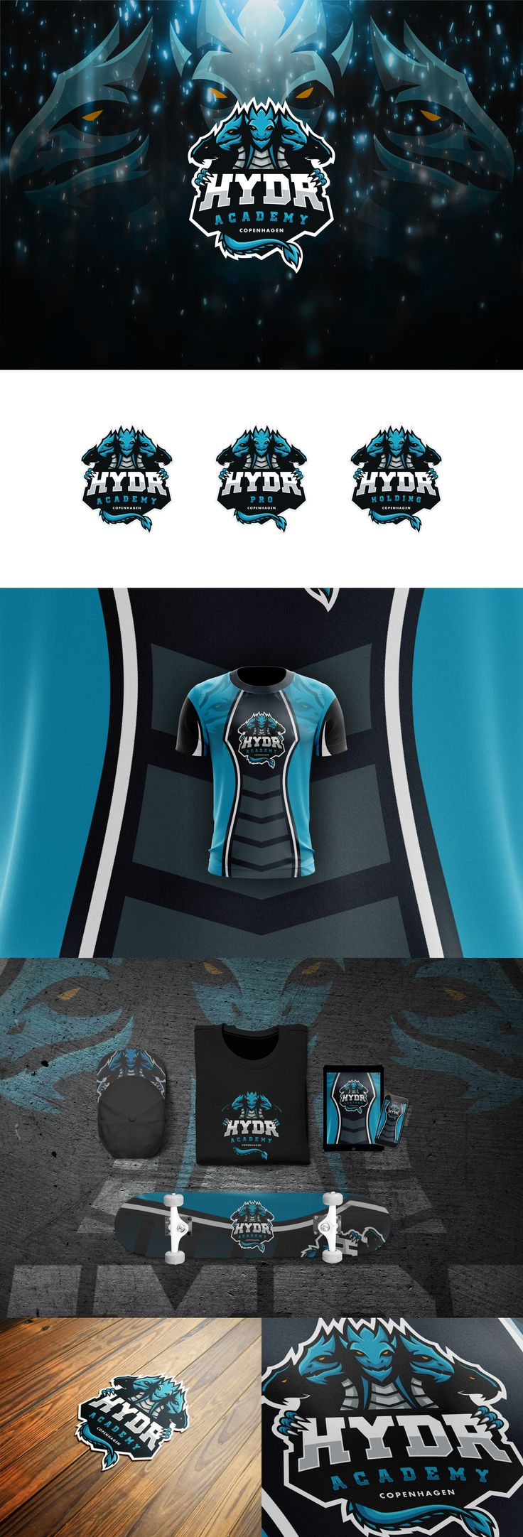 Illustrated Dragon Like Creatures For Hydra Academy An Esport Club Logo Design By J Ivan Gaming Branding Design Sports Logo Design Sports Logo Logo Design