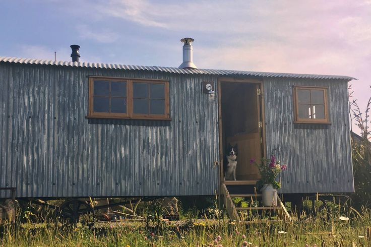 Entire home/flat in Morvah, GB. An authentic shepherd's hut set on a small, coastal sheep farm in West Cornwall. The hut offers a true taste of the life as a bygone shepherd but with a little extra comfort! Dogs welcome.