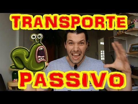 TRANSPORTE PASSIVO: Difusão Simples   Difusão Facilitada   Osmose - YouTube