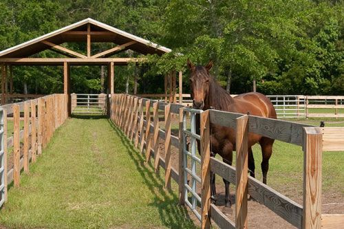 Wildflower Farm Stables pasture shelter