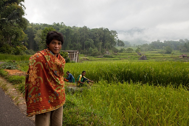 Encounter, Tana Toraja by Marji Lang, via Flickr