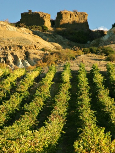 Mt Difficulty Vineyard and Historic Sluicings, Bannockburn, South Island, New Zealand. Photo: David Wall