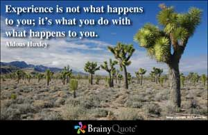 Experience is not what happens to a man; it is what a you do with what happens to you. ~ Aldous Huxley