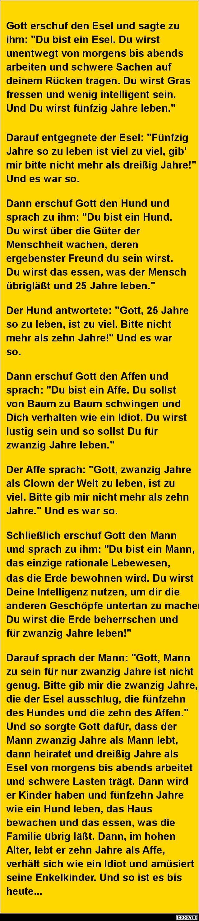 Gott erschuf den Esel und sagte zu ihm.. | DEBESTE.de, Lustige Bilder, Sprüche, Witze und Videos