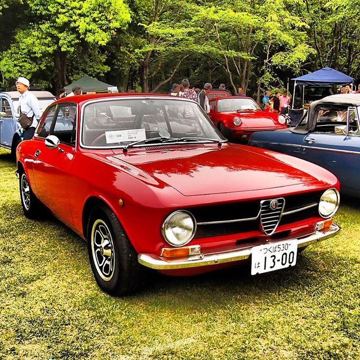 25+ Best Ideas About Alfa Romeo Junior On Pinterest