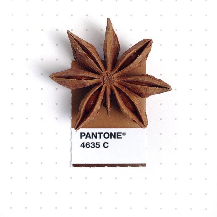 Esta diseñadora empareja muestras de Pantone con pequeños objetos cotidianos