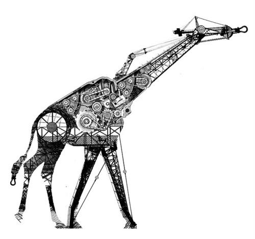 mechanical animals mechanical forms pinterest posts
