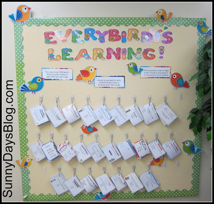 25+ Best Ideas About Bird Bulletin Boards On Pinterest