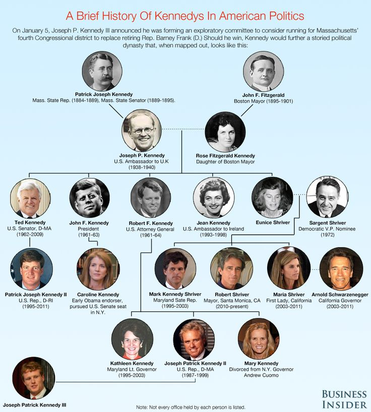 Kennedy Family Tree | The Kennedy Political Dynasty Family Tree [Infographic] - Business ...