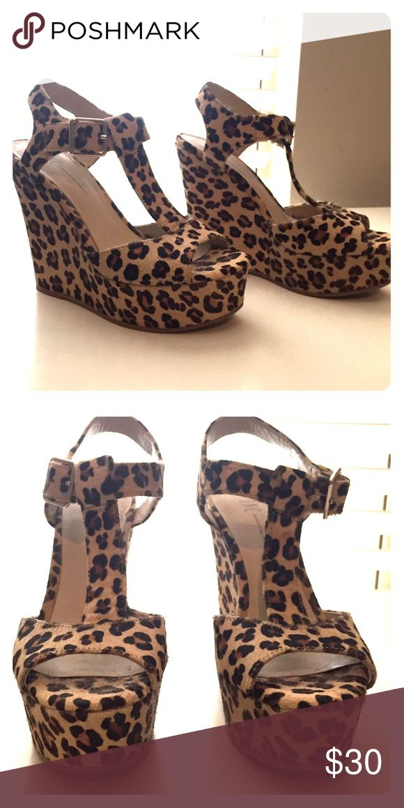 Sexy Leopard Wedges Lightly worn sexy leopard wedges! These shoes are so comfortable to wear whether you're at the office, school or out for the night! Shoes Wedges