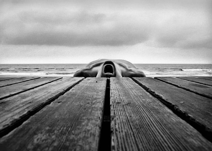 Best Photographie Images On Pinterest Photography Travel - Captivating black and white animal portraits by antti viitala