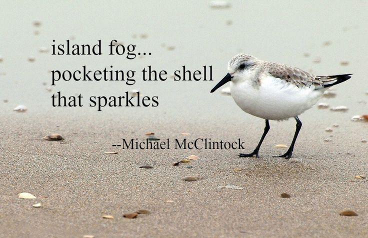 Haiku poem: island fog -- by Michael McClintock.