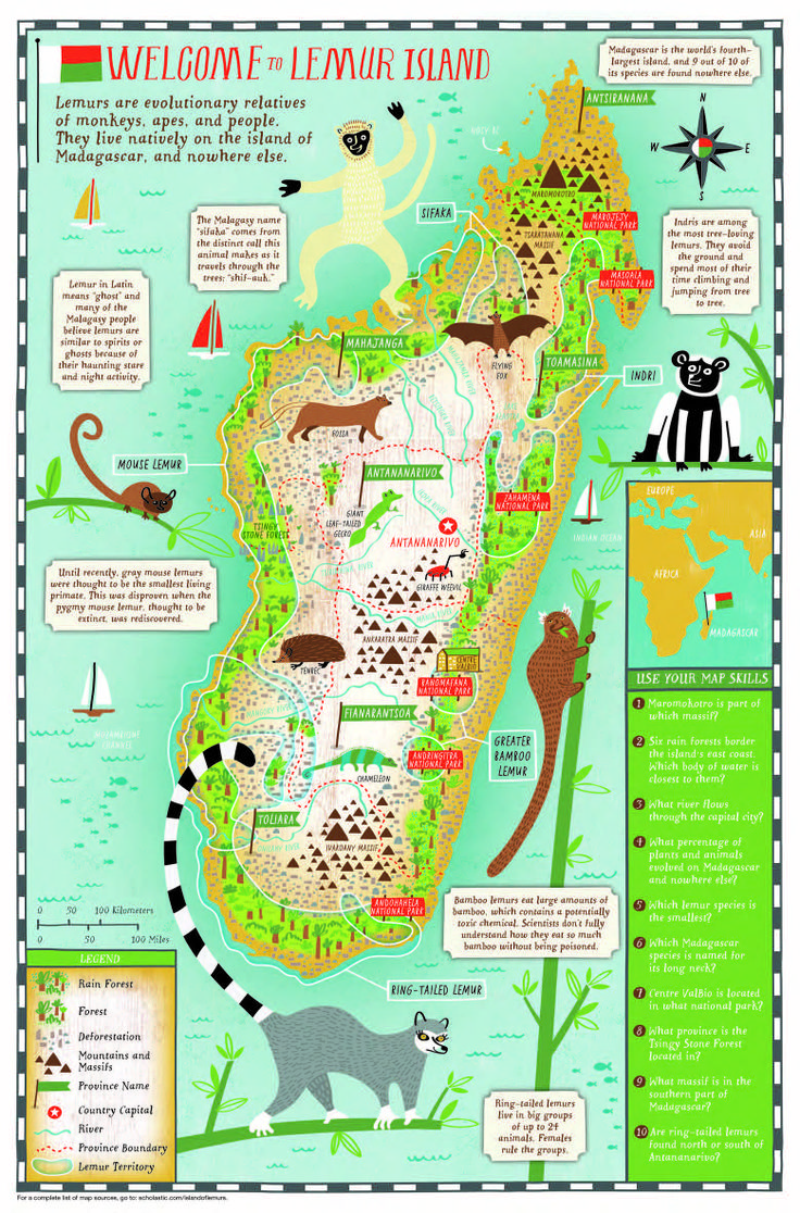 169 best images about Primate Education Resources on Pinterest ...