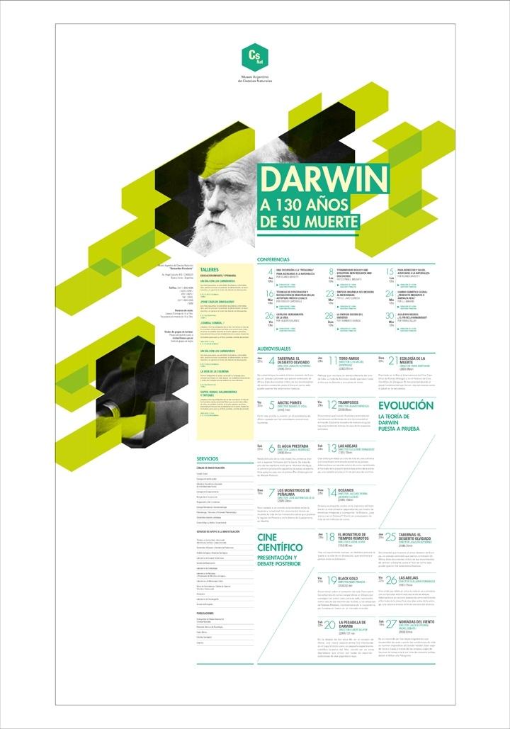 Afiche Programático