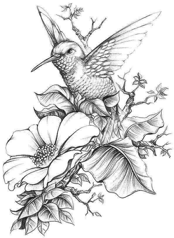 цветы фэнтези карандашом картинки поводу