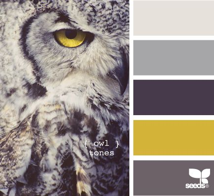 owl quilt color pallet! got to do this!: Colour, Colors Pallets, Colors Combos, Design Seeds, Bedrooms Colors, Colors Palettes, Owl Tones, Master Bedrooms, Colors Schemes